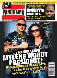 Panorama14Cover